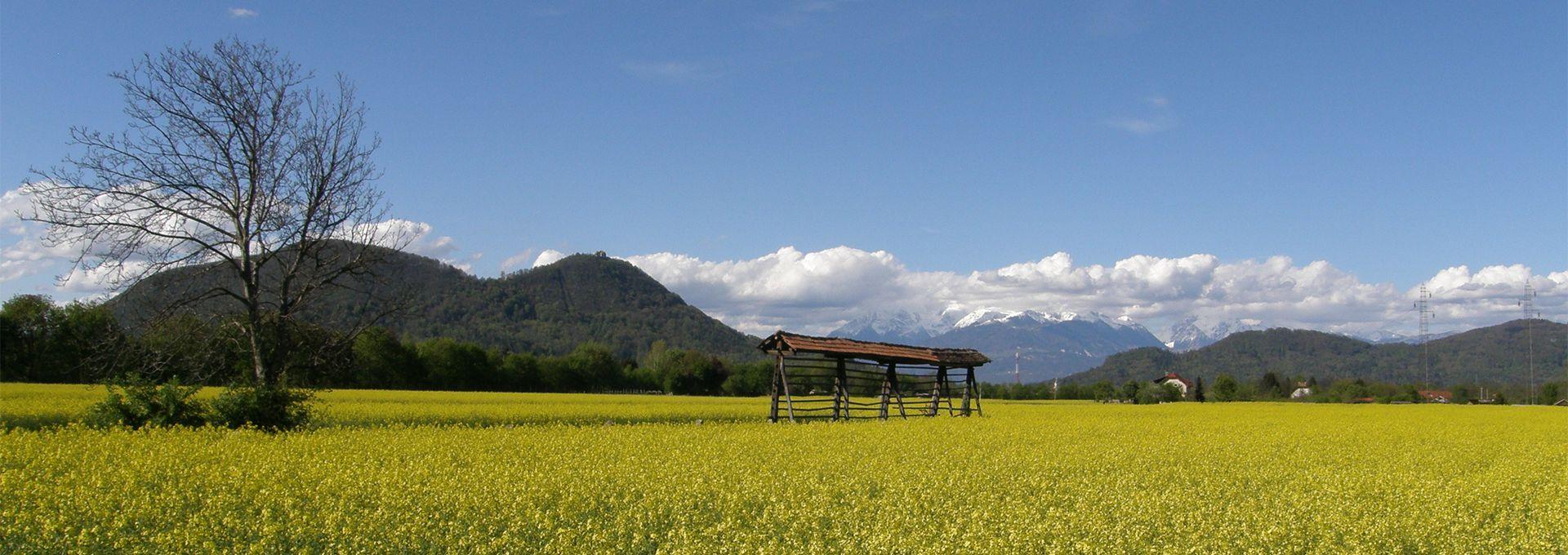 Naša župnija leži v čudoviti naravi med Šentviškim hribom ter Savo in Šmarno goro